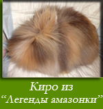 посмотреть Киро