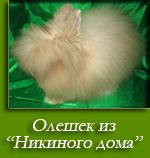 посмотреть Олешек